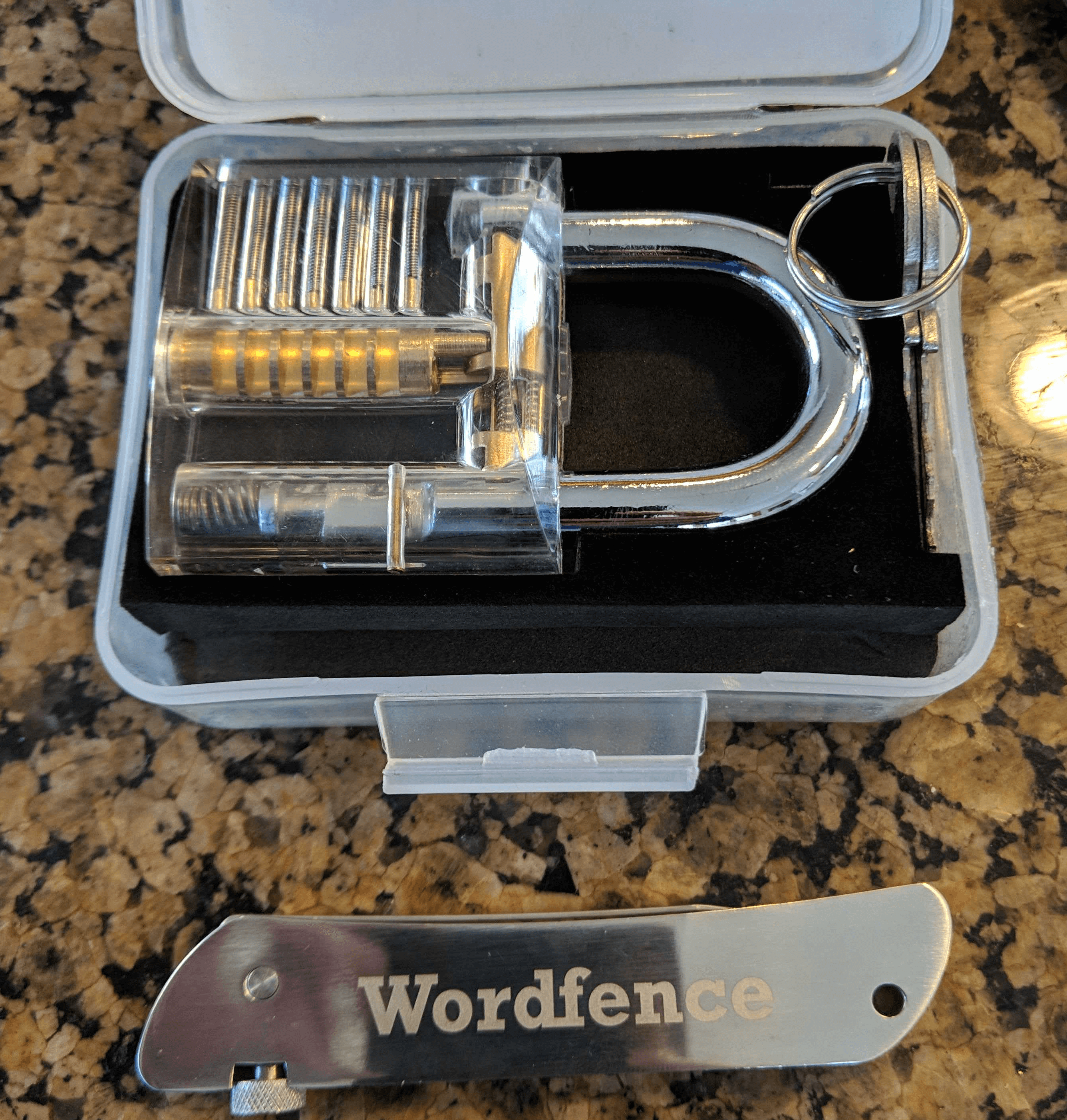 2019 Wordfence lockpick set